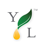 Follow Us on Young Living